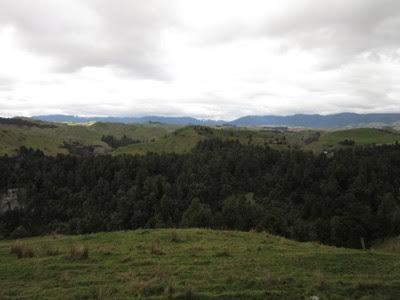 Carretera escénica Manawatu y valle Pohangina, Nueva Zelanda