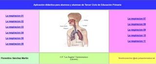 http://cplosangeles.juntaextremadura.net/web/cmedio6/la_respiracion/index.htm