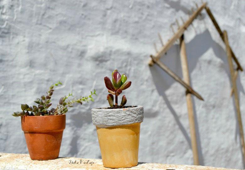 En el diy de hoy utilizaremos una jaula sencilla de pajaritos como macetero para plantas de tamaño pequeño