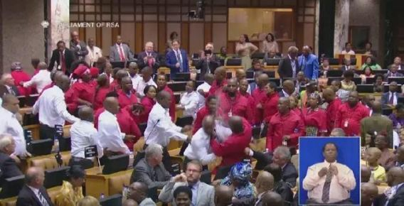 My balls were squeezed - SA opposition leader, Malema on Parliament brawl