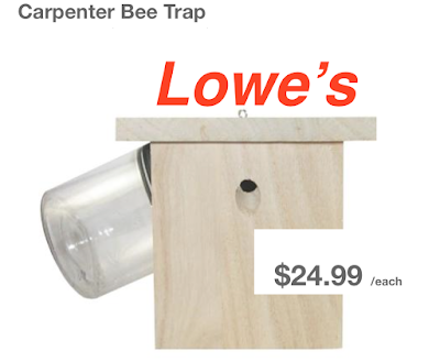 Lowe S Carpenter Bee Pictures To Pin On Pinterest