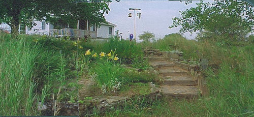 flower garden with steps