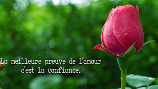 citation-amour-facebook-new