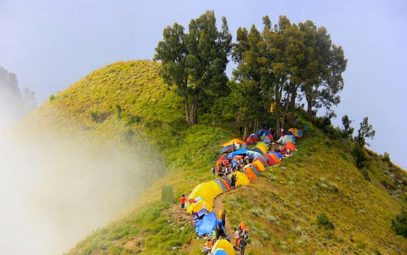 Jalur pendakian gunung Rinjani