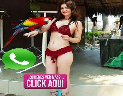 whatsapp de madres solteras