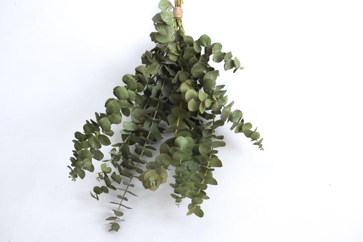 eukalyptuskimppu