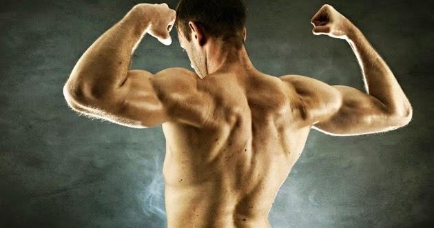 4 Cara Membentuk Tubuh Berotot Tanpa ke Gym