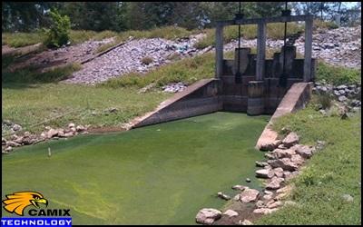 Công ty tư vấn đầu tư hệ thống xử lý nước thải nhà máy thủy sản - Tổng  quan nước thải chế biến thủy sản