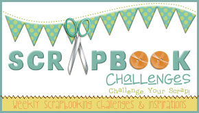 Ex -2011  design team Scrapbook Challenges