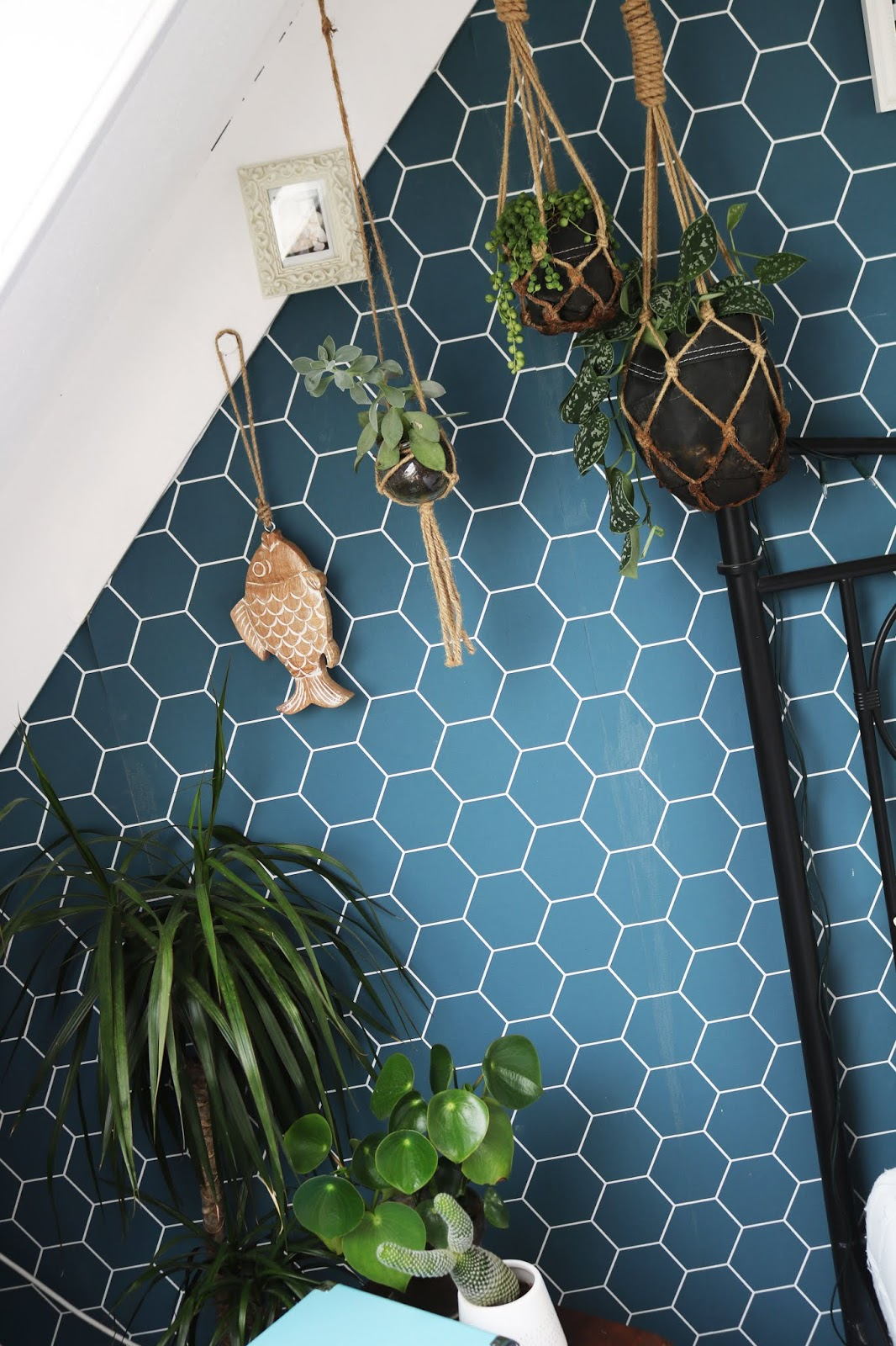 By-Evelien: 6x mijn favoriete plantjes voor in je interieur!