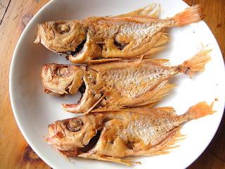 DWAN雲之端: 煎魚--剝皮魚、臺灣鯛魚、鱈魚、秋刀魚、白帶魚、----