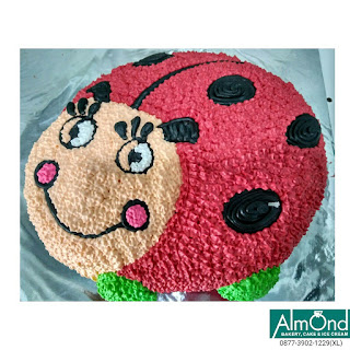 Cake Buttercream, Cake buttercream decorating,Cake buttercream flowers,cake buttercream frozen,Cake buttercream ladybug.