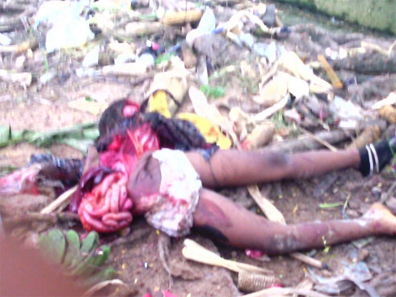 Graphic photos: Mechanic crushes girl to death while test-driving client's car