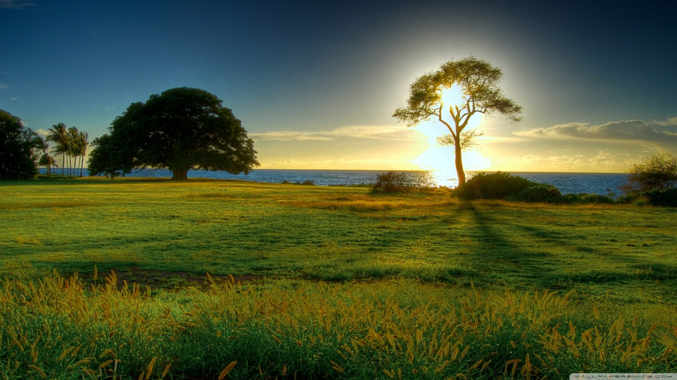Landscape HD Wallpapers: Nature Wallpapers ( Resolution