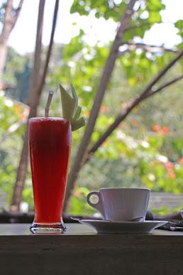Frucht-Shake und Kaffe im Guru Cafe in Ella