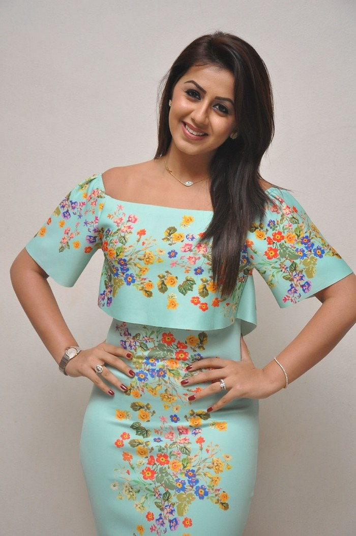 Nikki Galrani At Marakathamani Success Meet Gallery