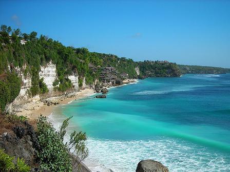 Laporan Hasil Penelitian Ekosistem Pantai Jasa Pengetikan Cibinong