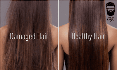 7 Best Foods For Healthy And Strong Hair