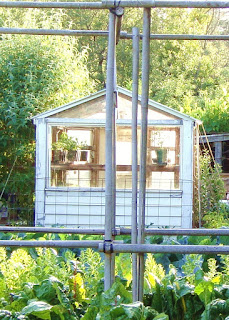 The Garden Oracle's Season Extender Pages:  Find Plant Protection, Garden Fabric, Cloches, Cold-Frames, Hoop Houses, Greenhouses, Shade Houses and other Micro-Climate Creating Devices.  Especially Helpful for Harsh Winters, Long Wet Seasons, or Getting a Jump on the Growing Season for Vegetables and Flowers!  Browse Options for the Home Gardener, Tropical Plant Enthusiast, Small-Scale Farmer or Small Market Gardener.  Happy Garden Shopping!