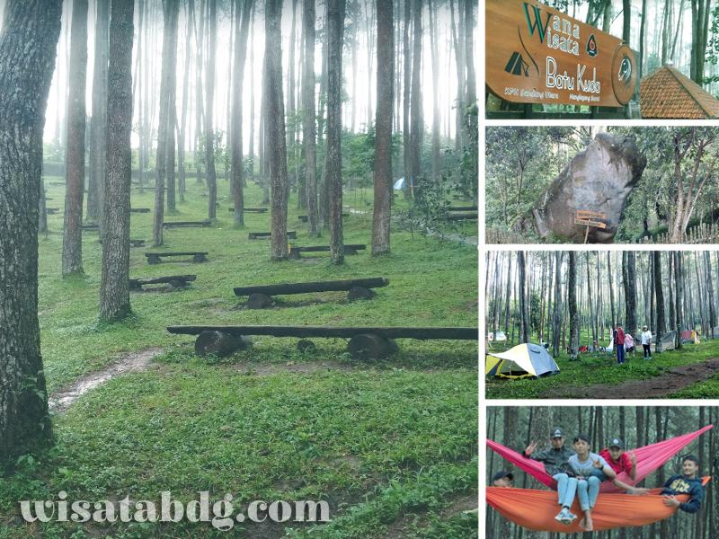Batu Kuda Wisata Kesejukan Hutan Pinus Di Bandung Timur
