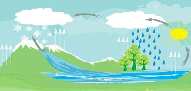 ما هي دورة الماء في الطبيعة ؟
