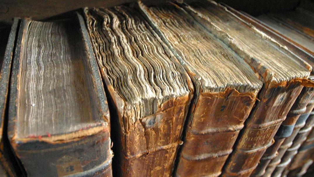 Νεοελληνική γλώσσα: Στοχασμοί για το παρόν και το μέλλον της