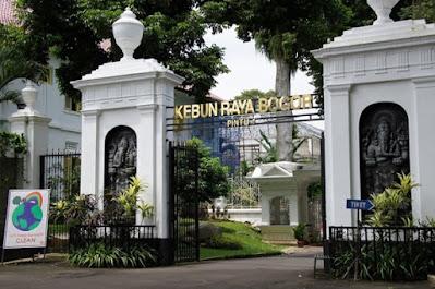 Bogor Botanical Garden, It's Not About The Trees!, garden, fantastic garden, a new garden style, vacation, botanical vacation