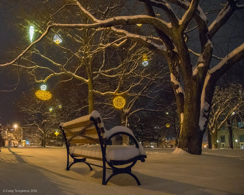 Portland, Maine USA January 2018 photo by Corey Templeton. A recent snowy evening in Portland's Lincoln Park. The new lighting by Pandora LaCasse really brightens up this spot.
