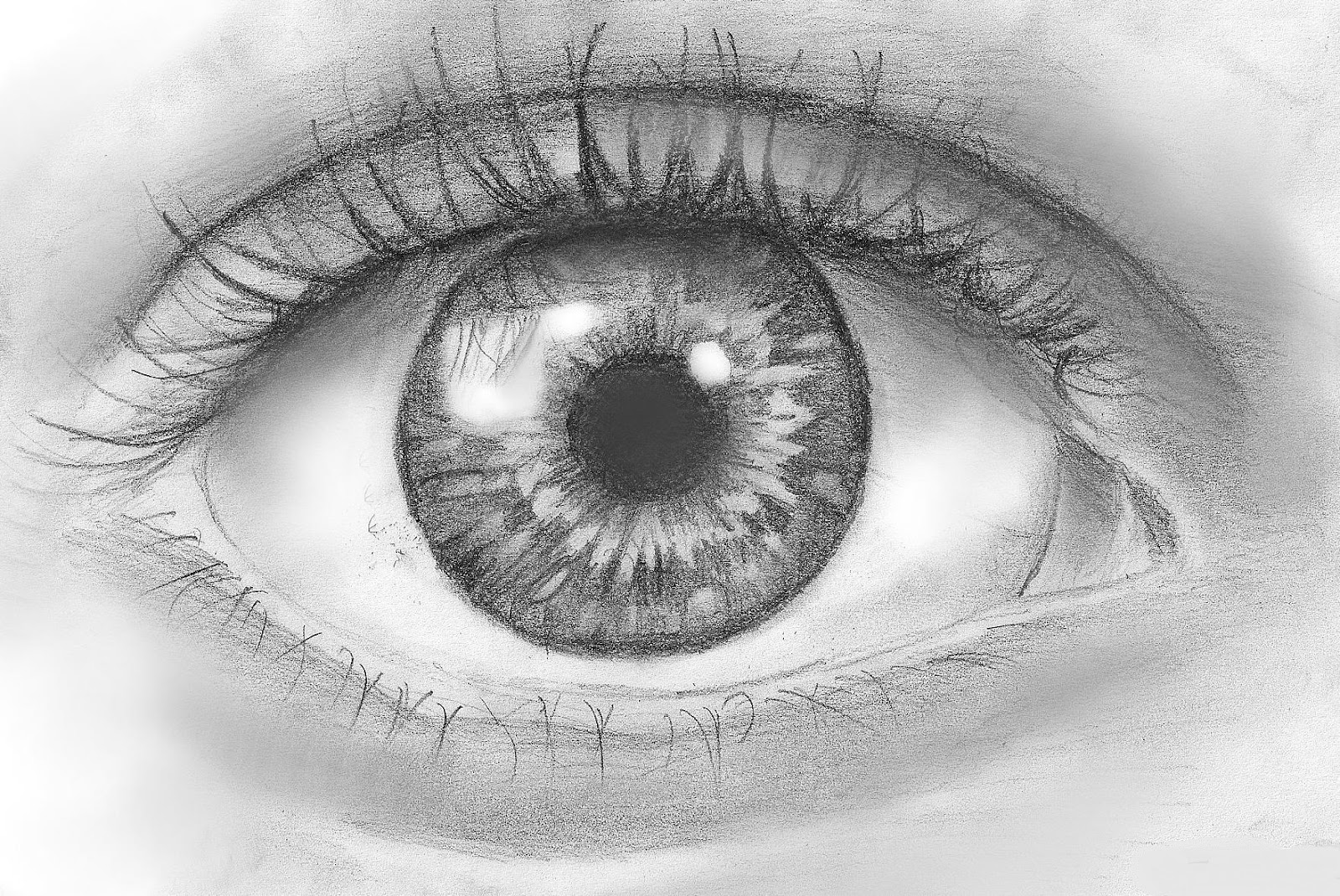 how to draw: How to Draw an Eye in Pencil