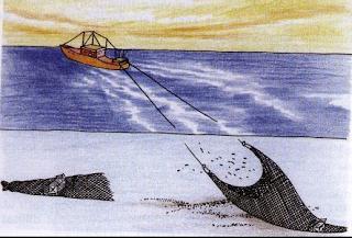 Cara pengoperasian alat penangkap ikan dogol