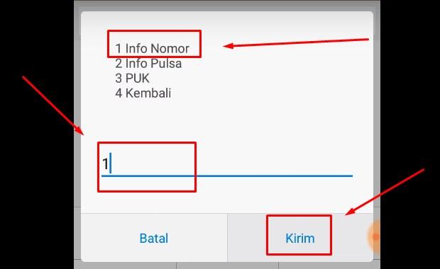 Cek Pulsa XL Melalui Dial Call atau UMB vii