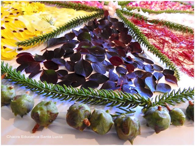 Mandala de hojas, semillas y pétalos de flores - Chacra Educativa Santa Lucía