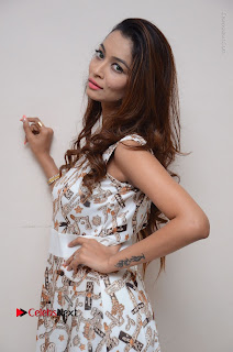 Telugu Actress Reshmi Thakur in Long Dress at Plus One ( 1) Audio Launch  0052.jpg