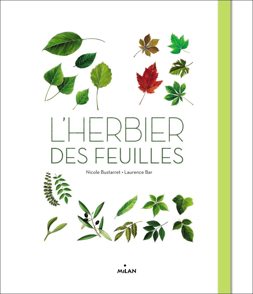 Superchouette l 39 herbier des feuilles - Faire un herbier ...