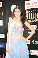 Amyra Dastur in Flower Print Choli Transparent Chunni at IIFA Utsavam Awards029.JPG