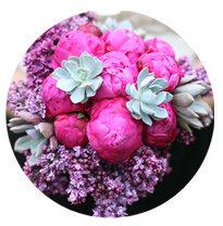 Cool Winter seasonal color flowers
