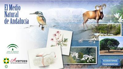 http://www.ceiploreto.es/sugerencias/juntadeandalucia/Medio_natural_andalucia/index.html