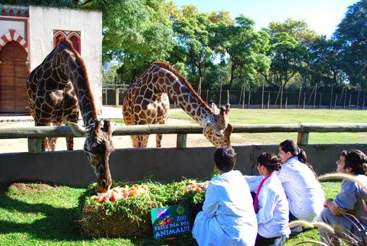 Zoologico de Buenos Aires