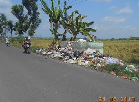 Sampah Pinggir Sawah