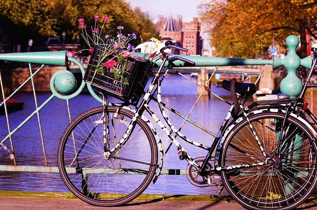 slowlingo, nauka języków, niderlandzki