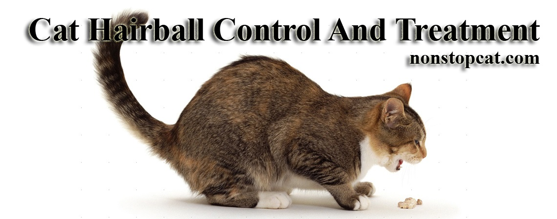 Cat Hairball Control And Treatment