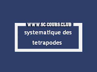Cours systematique des tetrapodes svi s5 pdf