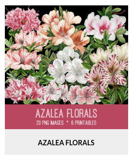"CoffeeShop ""Azalea"" Digital Paper Pack and Photoshop Pattern!"