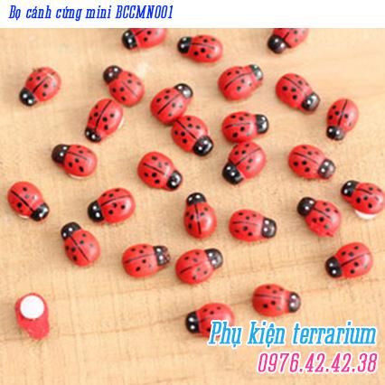 Bo canh cung mini BCCMN001