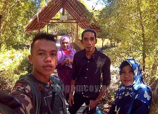 mangrove park desa sebubus paloh sambas