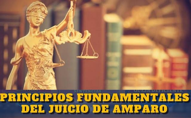 principios constitucionales o fundamentales del juicio de amparo