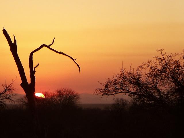 Atardecer en Hlane National Park