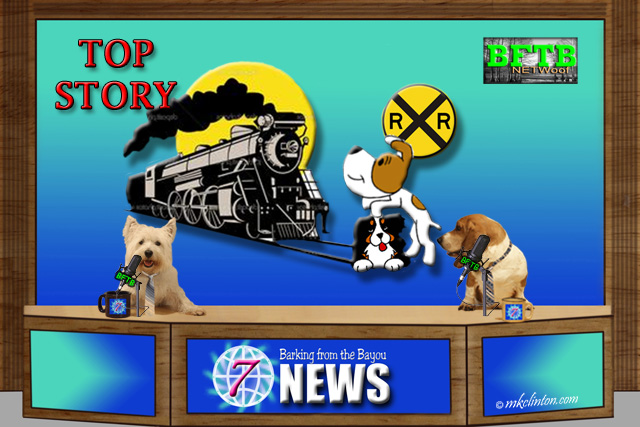 BFTB NETWoof News top story of a dog protecting his friend from a train