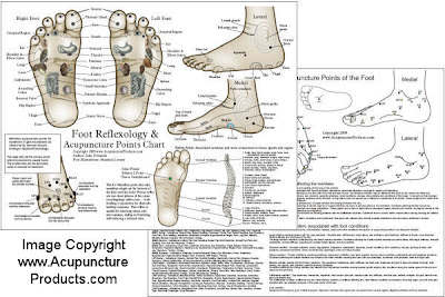 Accupuncture Points In Foot 15