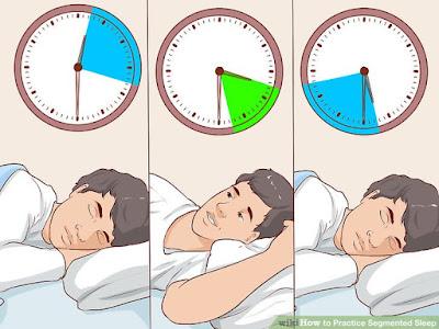 segmented sleep